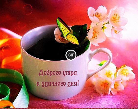 Гифки доброе утро и хорошего дня красивые