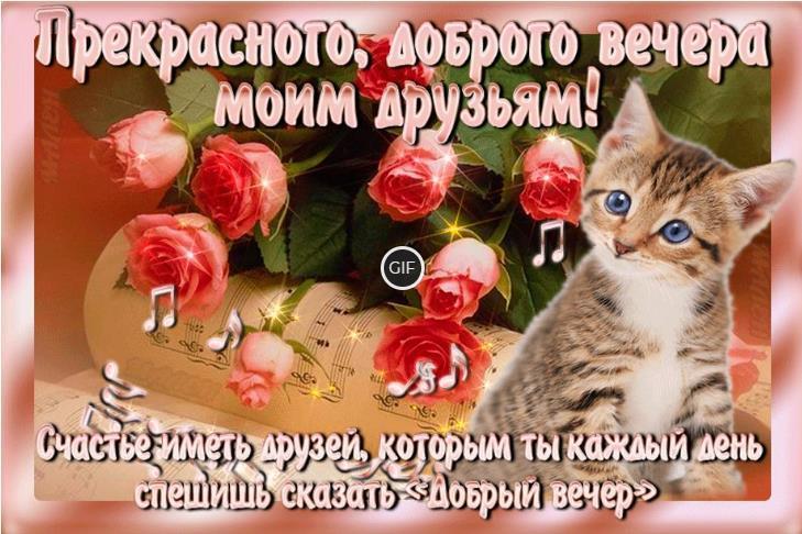 Гифки добрый вечер друзья с пожеланиями красивые