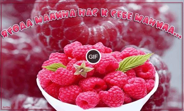Гифки фрукты и ягоды