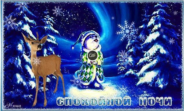Гифки спокойной зимней ночи