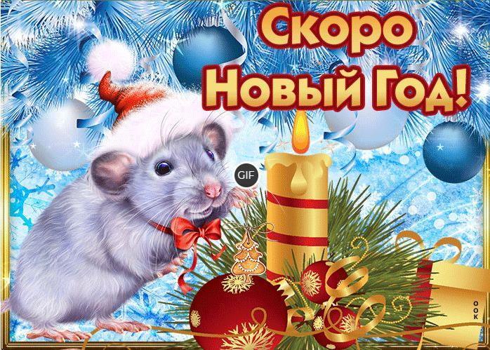 Гифки поздравления на новый год 2020 год крысы