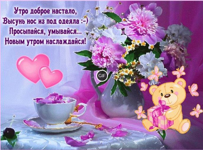 Гифки с добрым утром и хорошим днем