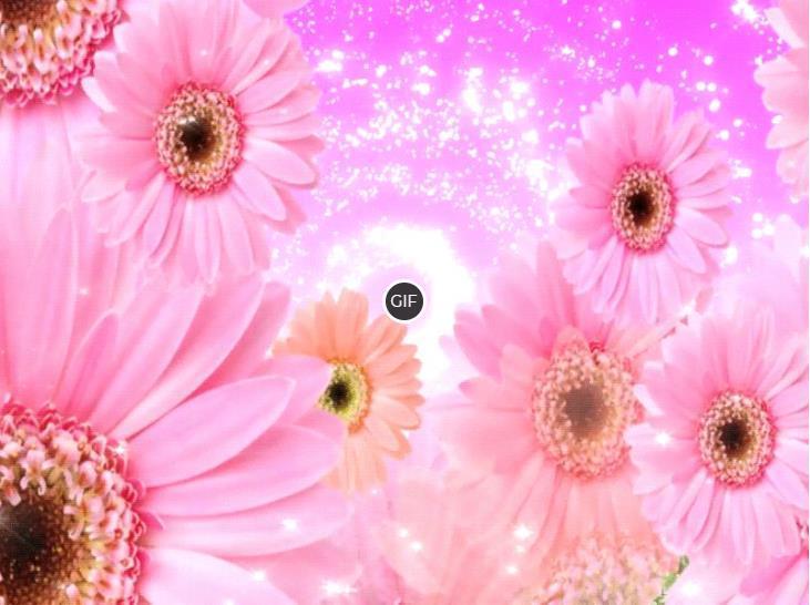 Гифки с цветами. Красивые букеты, распускающиеся бутоны