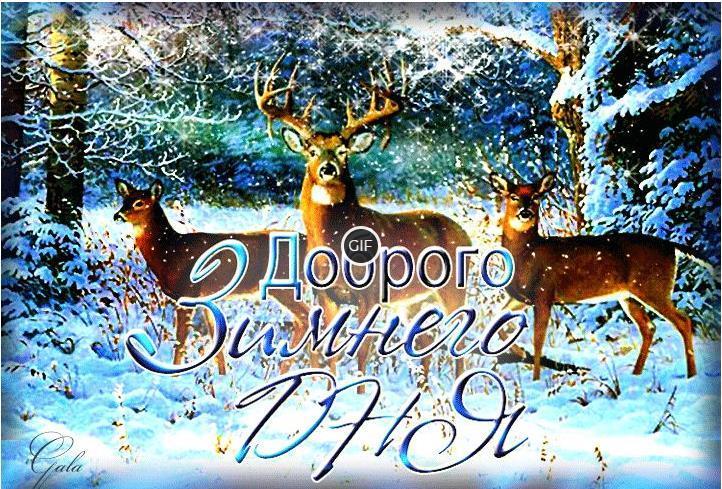 Гифки доброго зимнего дня