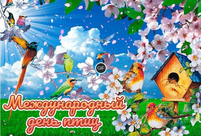 Гифки с международным днём птиц