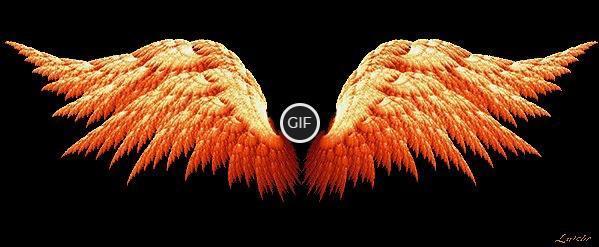 Гифки движущиеся крылья
