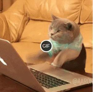Смешная гифка кот печатает на ноутбуке
