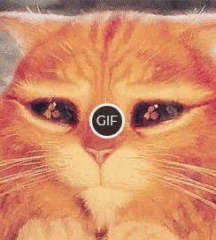 """Гифка невинный взгляд кота из мультфильма """"Кот в сапогах"""""""