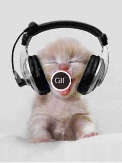 Гифка кот в наушниках гифка из тик тока