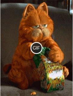 Гифка кот ест попкорн