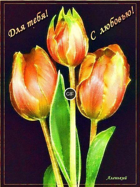Гифка эти тюльпаны для тебя с любовью!