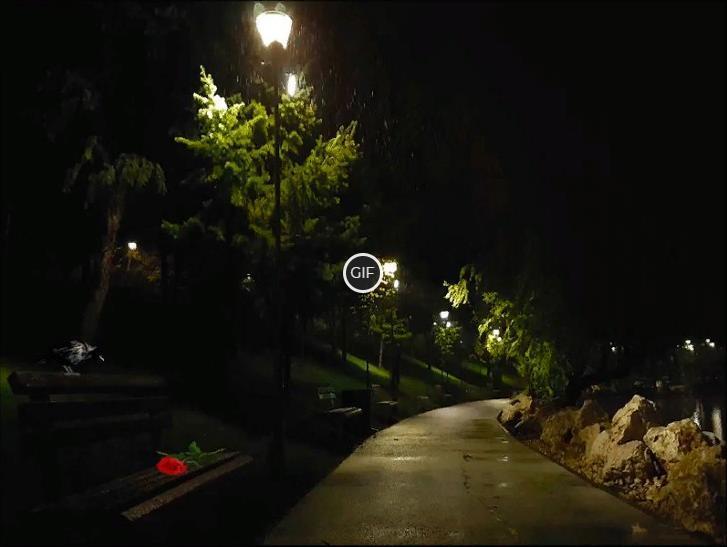 Гифка дождь в парке
