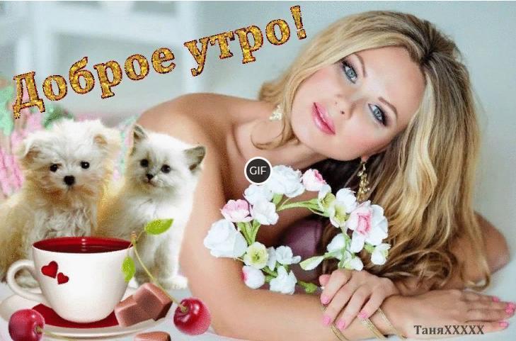 Доброго утра удачного дня и хорошего настроения гифки