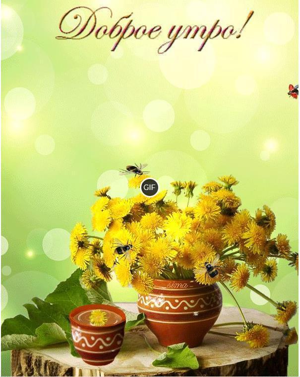 Красивая гифка с цветами с добрым утром