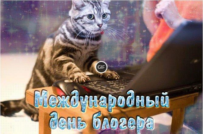 Гифки с международным днем блогера
