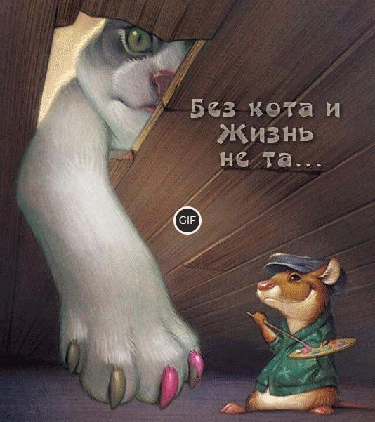Позитивная гифка без кота и жизнь не та...