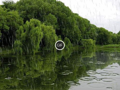Гифка летний дождь над озером