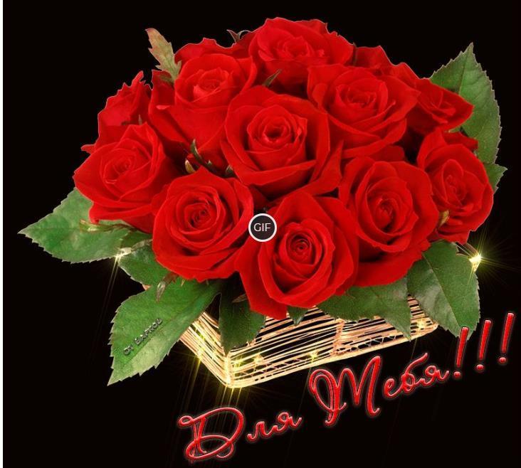 Гифка букетик красных роз для тебя