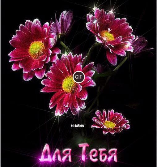Гифка цветочки для тебя