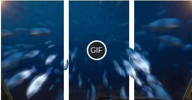 3Д гифка атака акулы