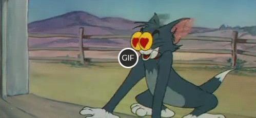 Гифка безумно влюблённый кот