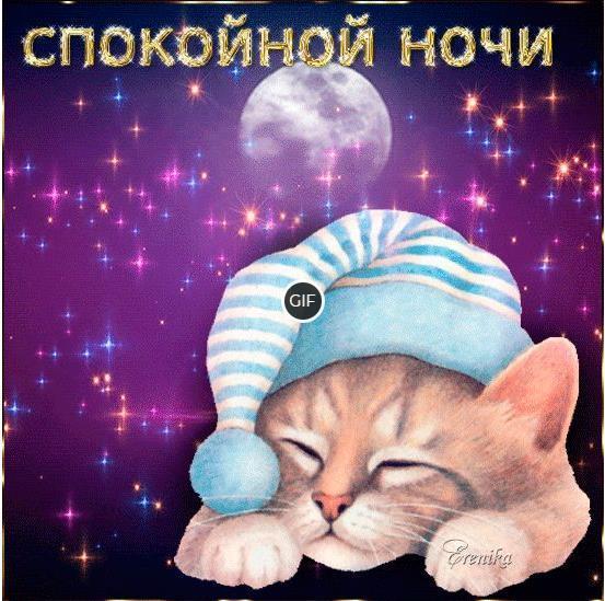 Мерцающая картинка спокойной ночи с котиком