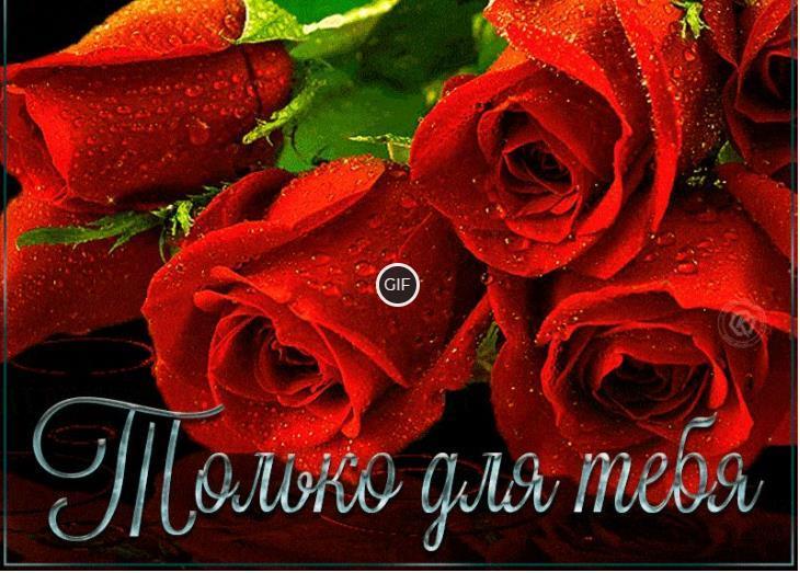 Открытки с розами красивые букеты