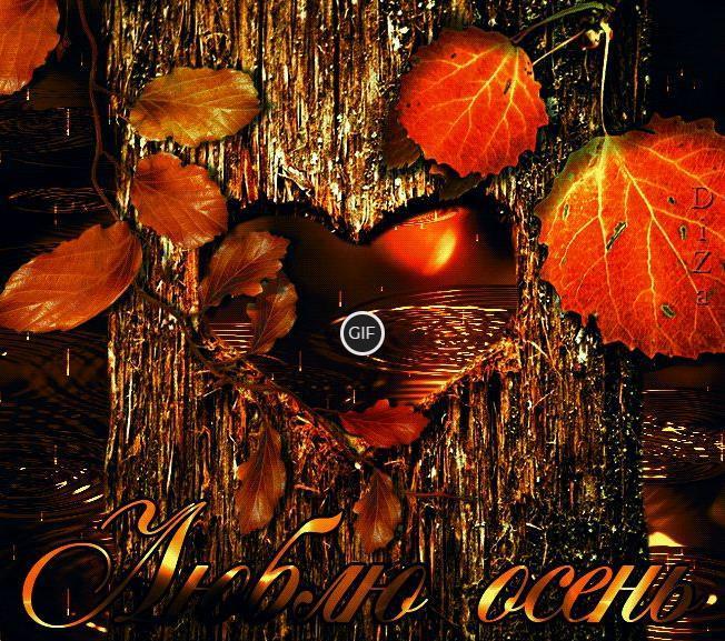 Красивые анимации осень