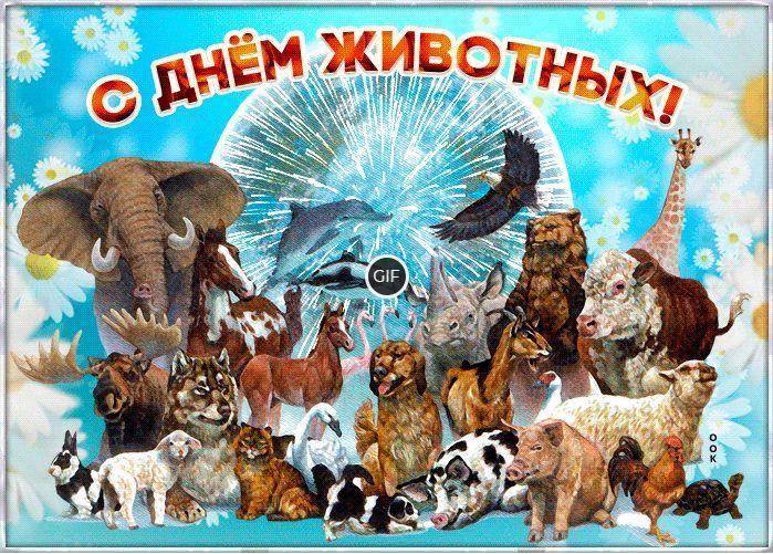 Гифки с всемирным днём животных