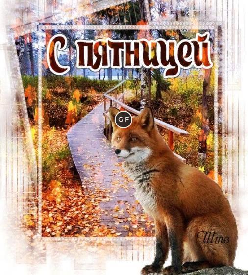 Красивая октябрьская гифка с Пятницей
