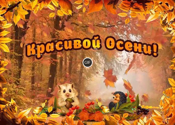 Осенние картинки красивые позитивные