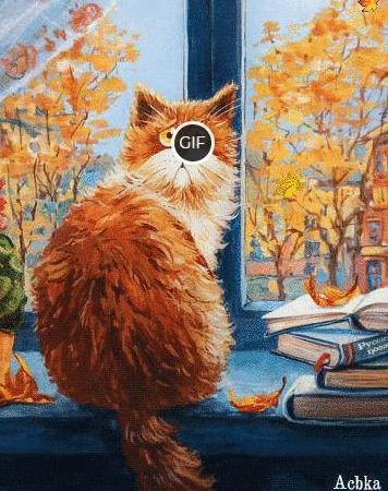 Гиф картинка рыжий осенний кот