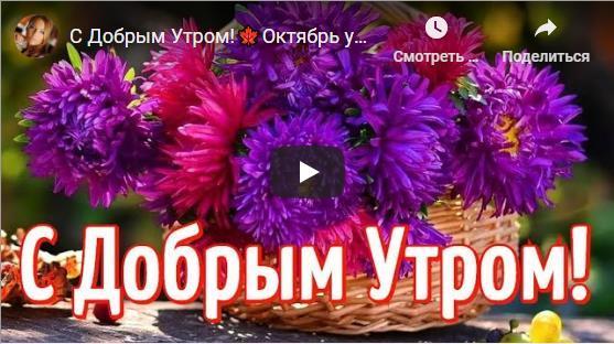 Видео открытки с пожеланием доброго утра