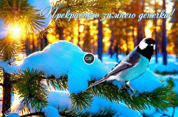 Картинки хорошего дня зимние