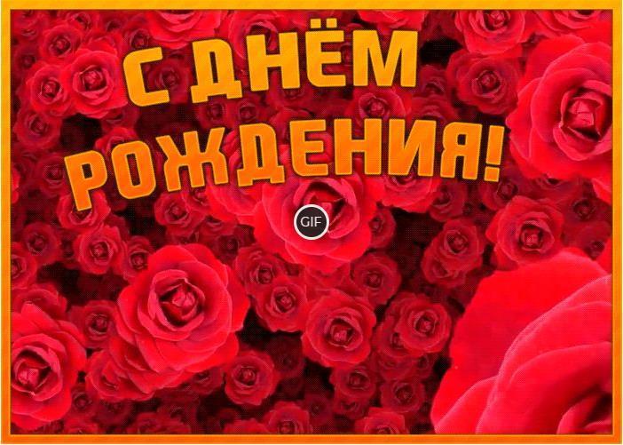Гиф розы с днём рождения