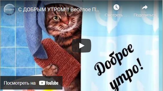 Красивые видео открытки с добрым утром бесплатно
