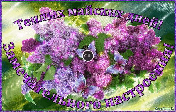 Пожелания доброго Майского дня