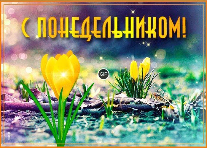 Пожелания доброго весеннего Понедельника