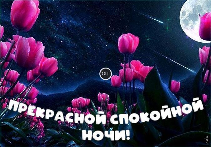 Пожелания спокойной Летней ночи
