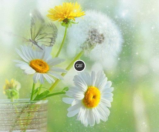 Гифки Летние цветы