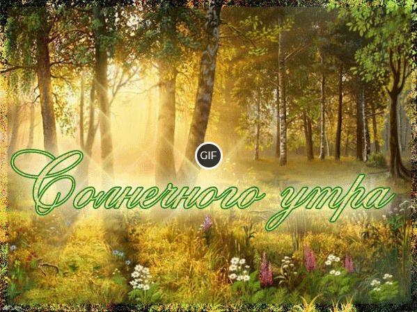 Гифки Доброго летнего утра и хорошего дня