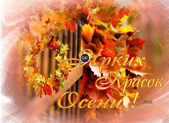Гифки с пожеланием доброго Сентябрьского дня и отличного настроения