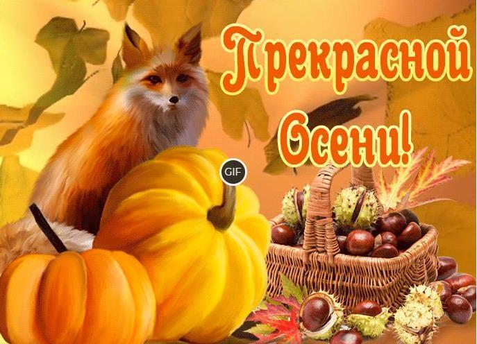 Красивые анимационные открытки про осень